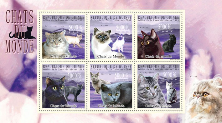 Cats of the World II - Issue of Guinée postage stamps
