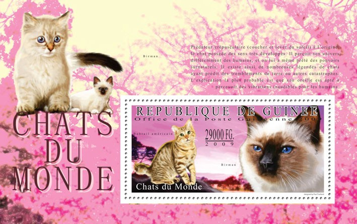 Cats of the World III - Issue of Guinée postage stamps