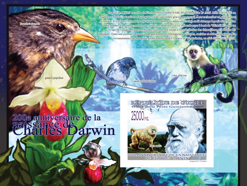 200th Anniversary of Charles Darwin I - Monkey Papio anubis?タᆵ - Issue of Guinée postage stamps