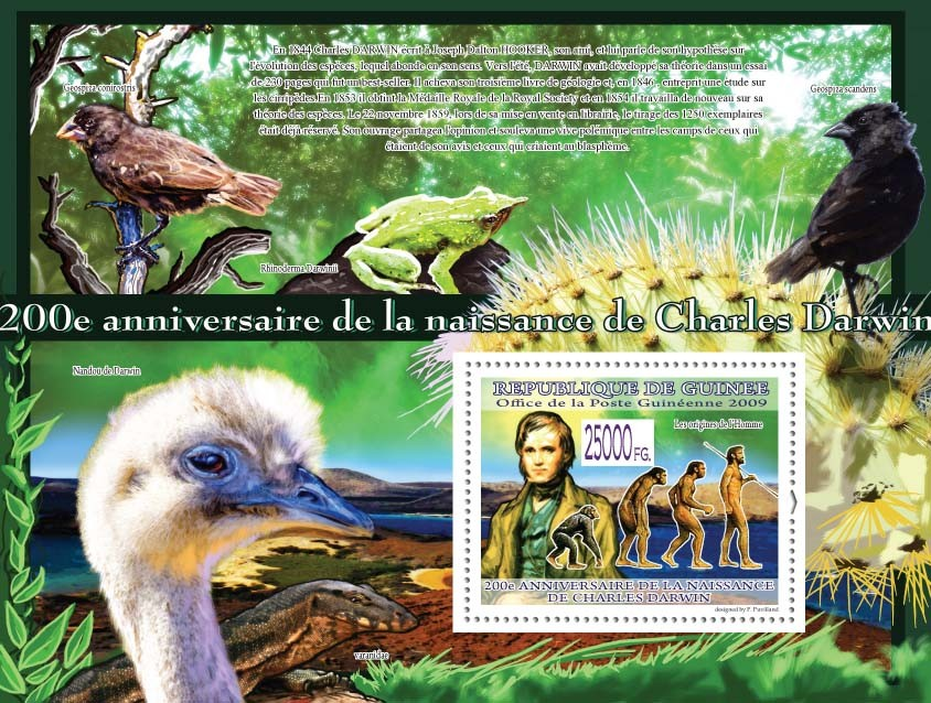 The origin of Man ( Birds & Animals ) - Issue of Guinée postage stamps