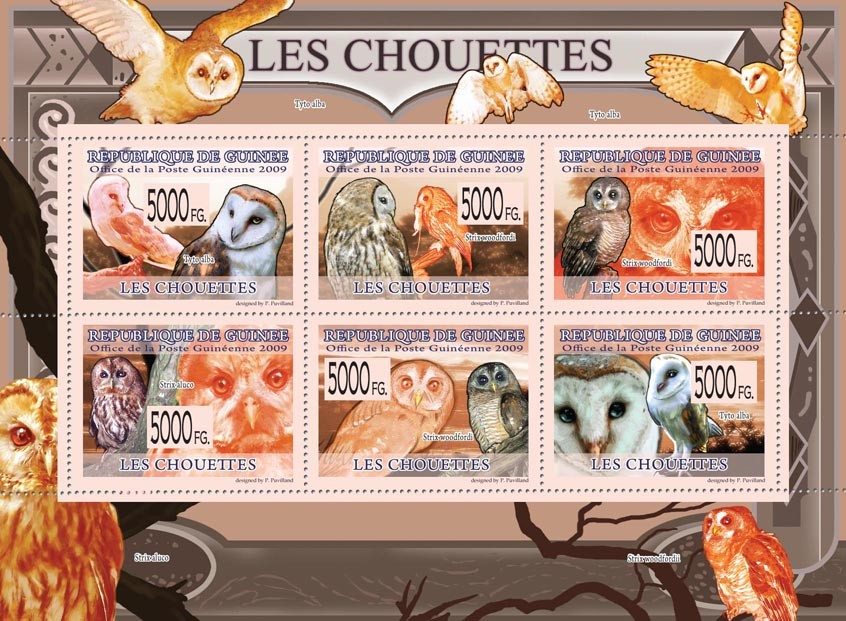 Owls, Tyto Alba, Strix woodfordi. - Issue of Guinée postage stamps