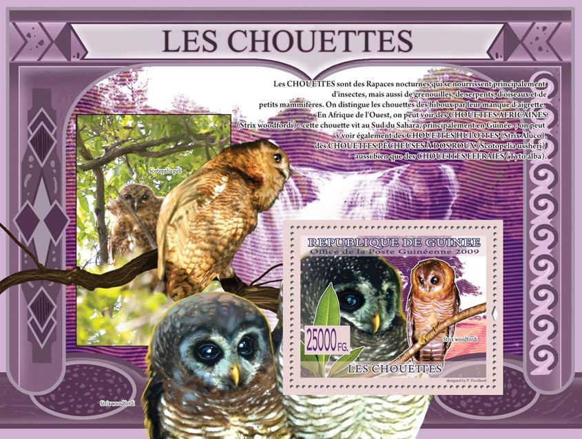 Owls, Strix woodfordi ( Scotopelia peli ) - Issue of Guinée postage stamps