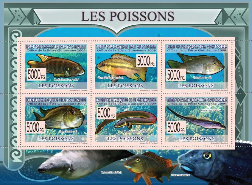Fishes, Benitochromis sp. eseka, Erpetoichthys calabaricus, etc - Issue of Guinée postage stamps
