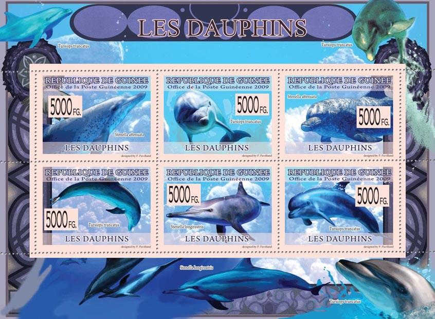 Dolphins,  Stenella longirostris, Turciops turncatus, Stenella attenuata - Issue of Guinée postage stamps