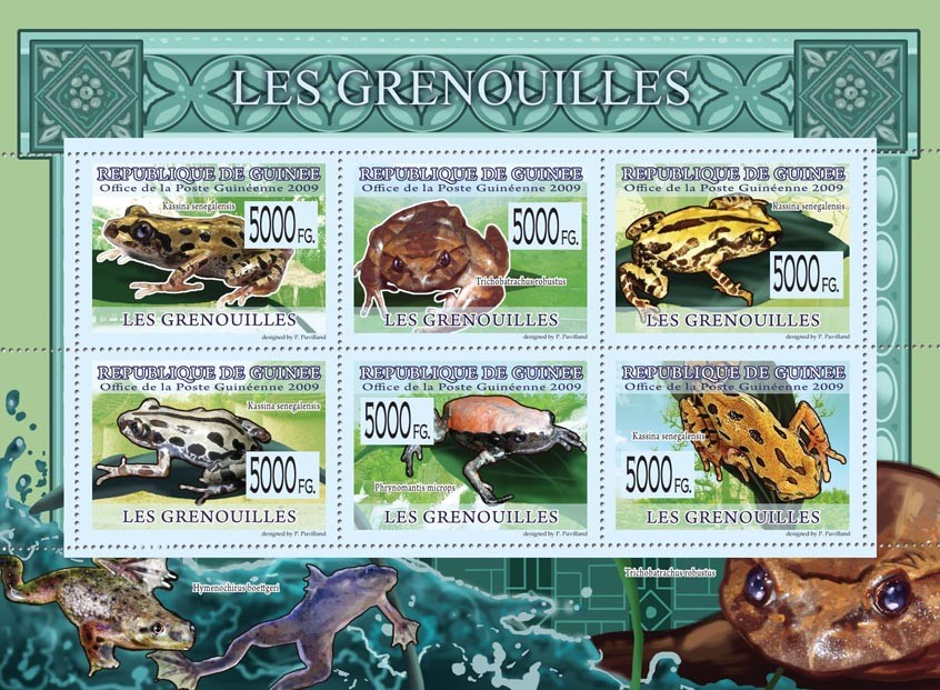 Frogs, Kassina senegalensis, Trichobatrachus robustus, etc - Issue of Guinée postage stamps