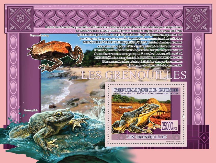Frogs, Conraua goliath ( Phrynomantis microps ) - Issue of Guinée postage stamps