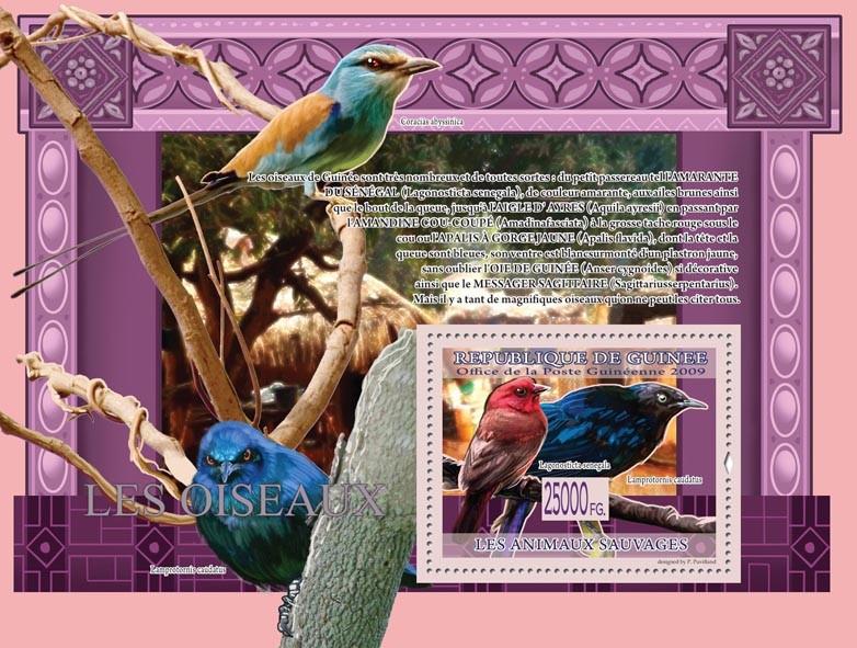 Birds, Lagonosticta senegala, Lamprotornis caudatus ( Coracias abyssinica ) - Issue of Guinée postage stamps