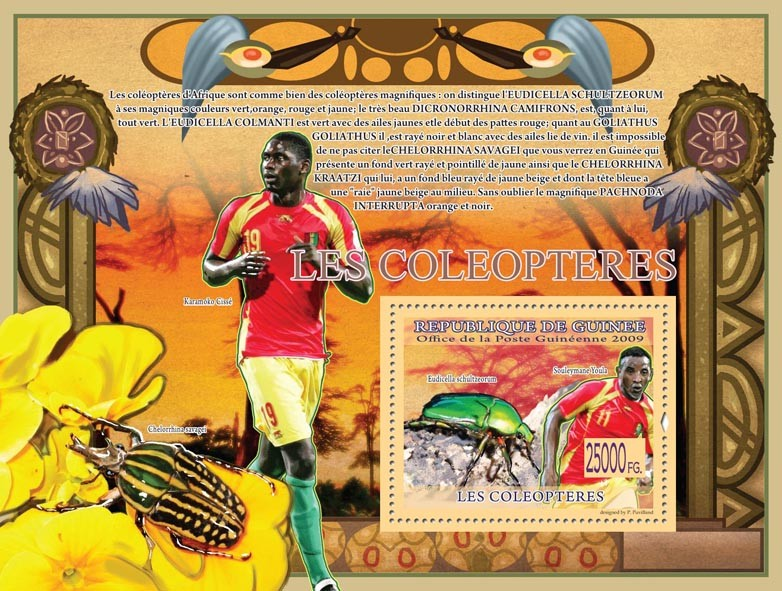 Beetles, Eudicella schulzeorum ( Chelorrhina savagei ) - Issue of Guinée postage stamps