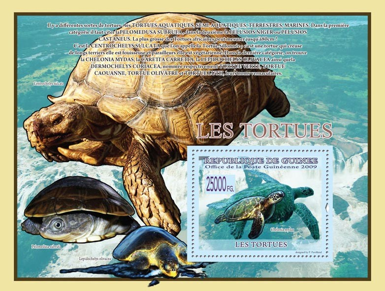 Turtles, Chelonia mydas ( Pelomedusa subrufa, etc. ) - Issue of Guinée postage stamps