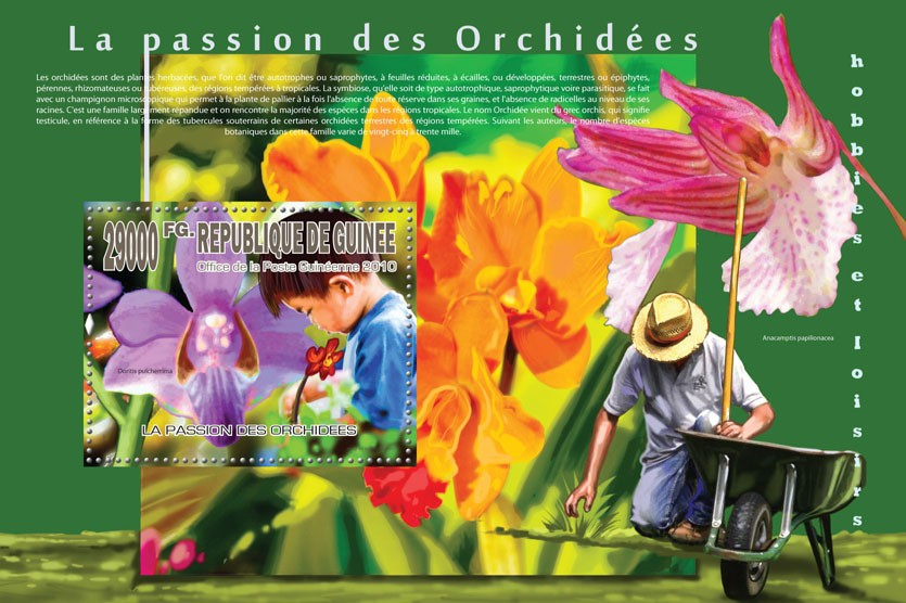 Orchids Passion (Flowers) - Issue of Guinée postage stamps