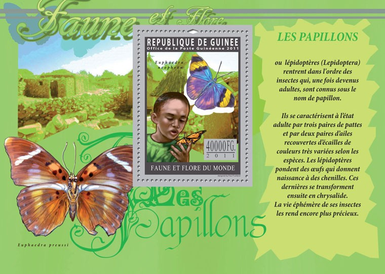 Butterflies. - Issue of Guinée postage stamps