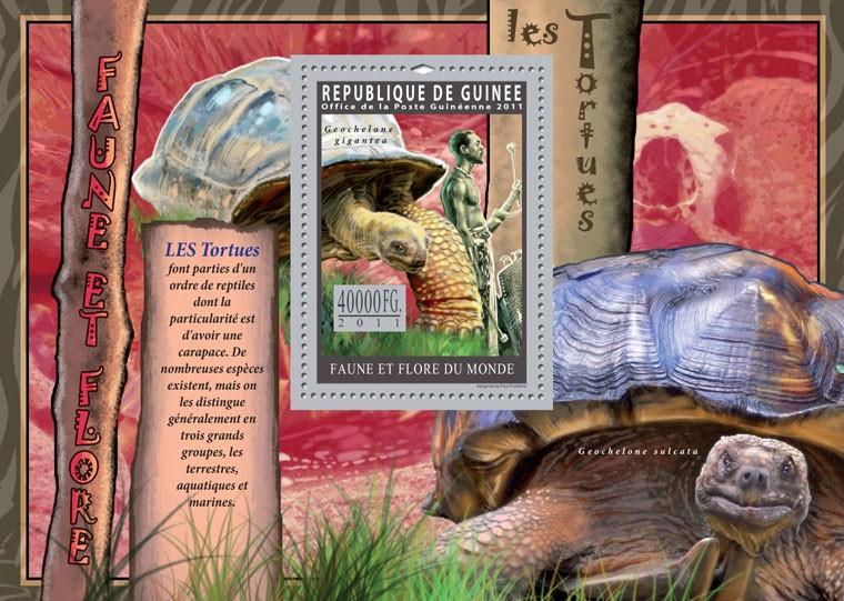 Turtles. - Issue of Guinée postage stamps