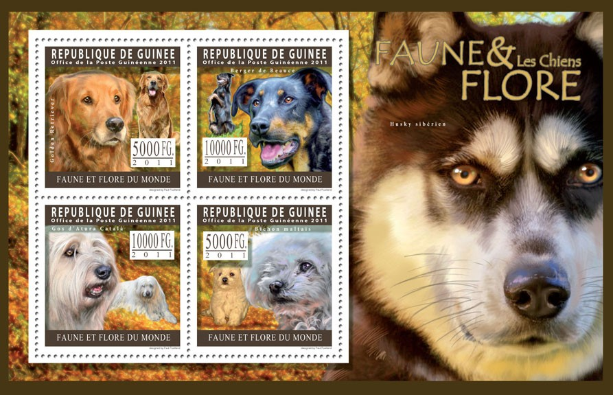 Dogs. - Issue of Guinée postage stamps