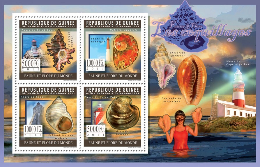 Shells. - Issue of Guinée postage stamps