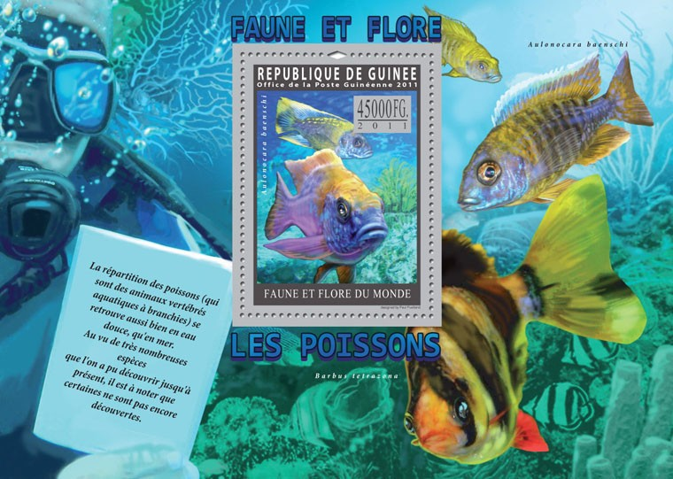 Fishes. - Issue of Guinée postage stamps