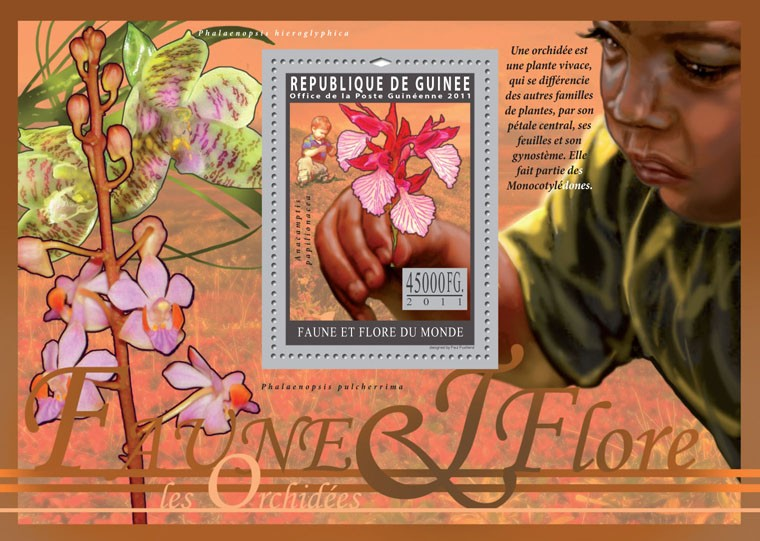 Orchids. - Issue of Guinée postage stamps