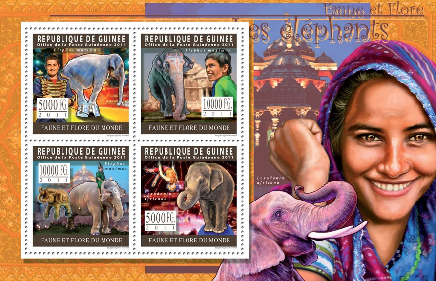 Elephants. - Issue of Guinée postage stamps
