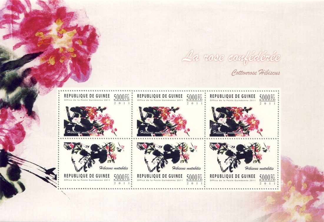 Flowers (Cottonrose Hibiscus). - Issue of Guinée postage stamps