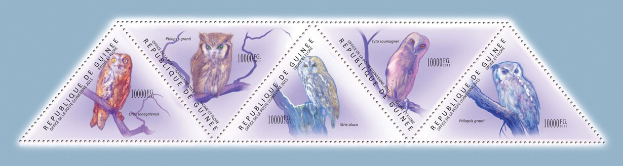 Owls, (Otus senegalensis, Ptilopsis granti). - Issue of Guinée postage stamps