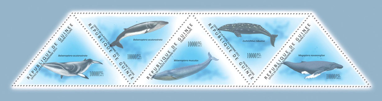 Whales, (Balanaenoptera acutorrastrata, Megaptera novaeanliae). - Issue of Guinée postage stamps
