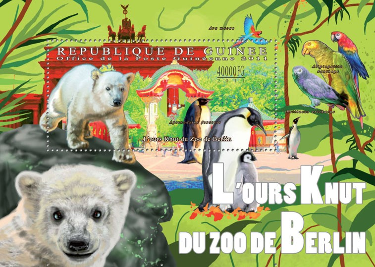 Bear - Issue of Guinée postage stamps