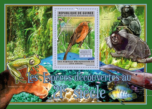 Species Discoveries in XXI Century. - Issue of Guinée postage stamps