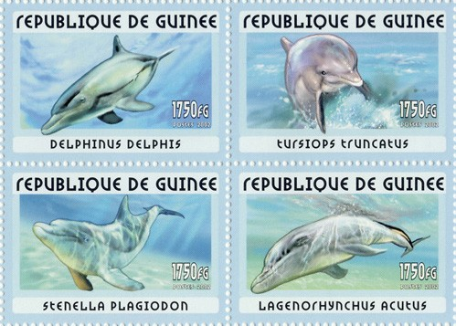 Dolphins 4v - Issue of Guinée postage stamps