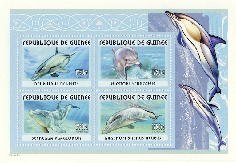 Dolphins s/s - Issue of Guinée postage stamps