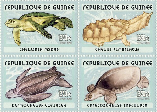 Turtles 4v - Issue of Guinée postage stamps