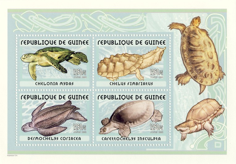 Turtles s/s - Issue of Guinée postage stamps