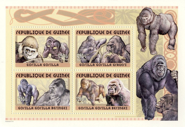 Gorilla s/s - Issue of Guinée postage stamps