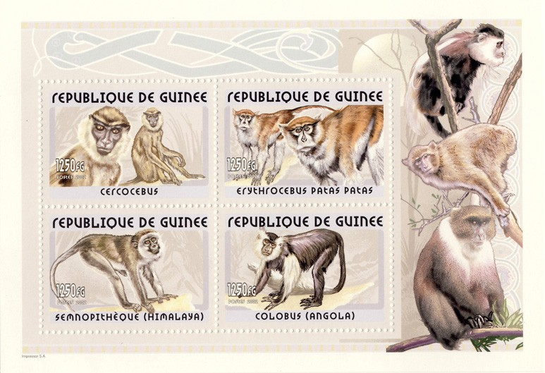 Monkeys s/s - Issue of Guinée postage stamps
