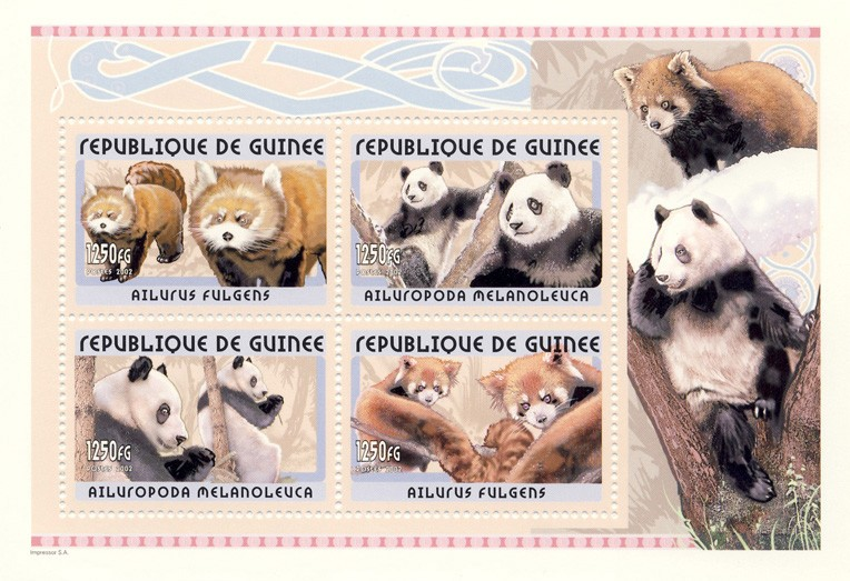 Panda s/s - Issue of Guinée postage stamps