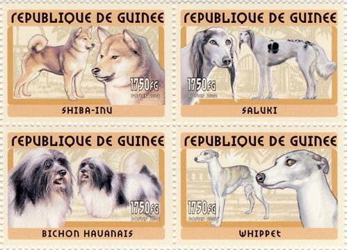Dogs 4v - Issue of Guinée postage stamps
