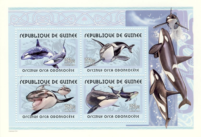 Orca s/s - Issue of Guinée postage stamps