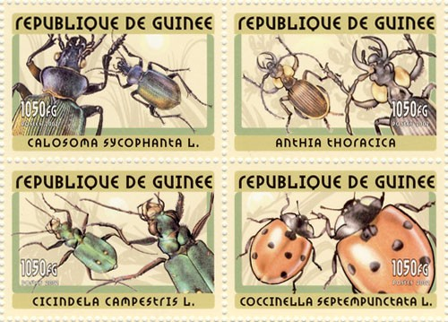 Insects 4v - Issue of Guinée postage stamps