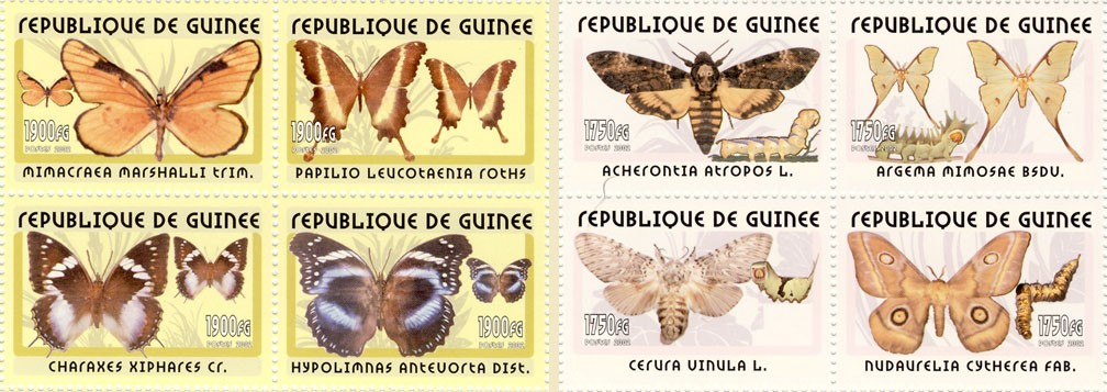 Butterflies 4v - Issue of Guinée postage stamps