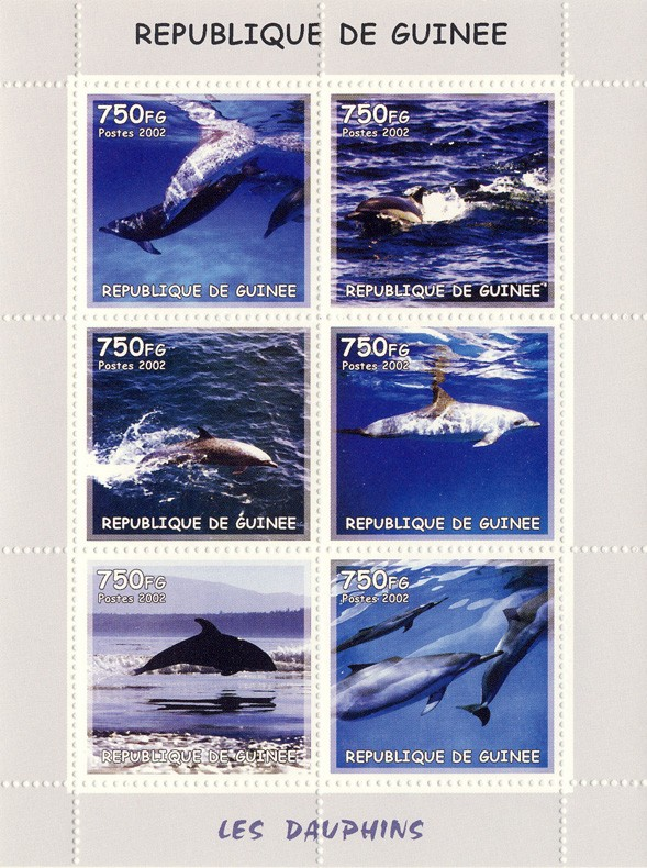 Dolphins 6v - Issue of Guinée postage stamps