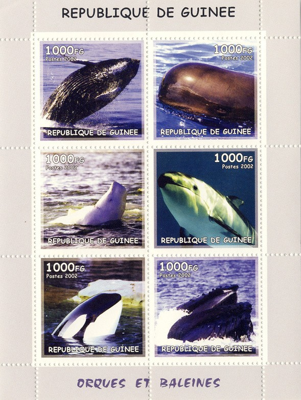 Whales 6v - Issue of Guinée postage stamps