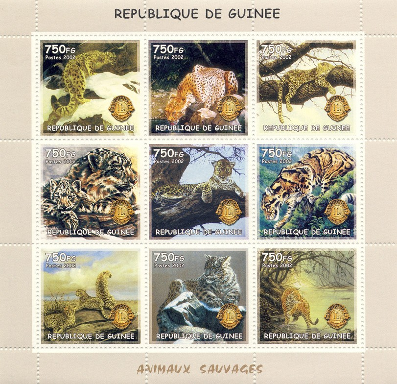Wild cats (Lion) 9v - Issue of Guinée postage stamps