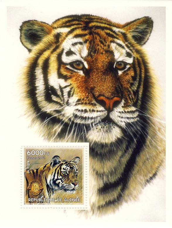 Wild cats (Lion) s/s - Issue of Guinée postage stamps