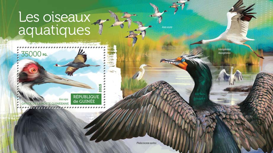 Water birds - Issue of Guinée postage stamps