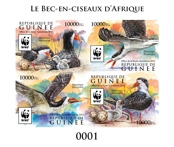 WWF – Skimmer (delux) - Issue of Guinée postage stamps