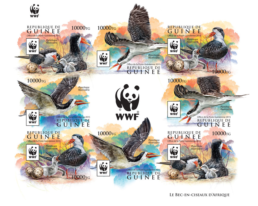 WWF – Skimmer (imperf. 2 sets) - Issue of Guinée postage stamps