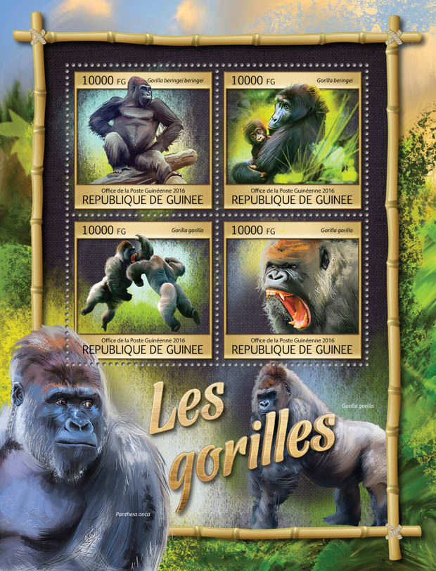 Gorillas - Issue of Guinée postage stamps