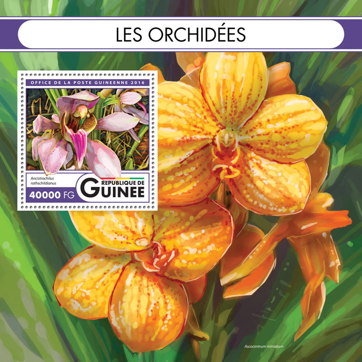 Orchids - Issue of Guinée postage stamps