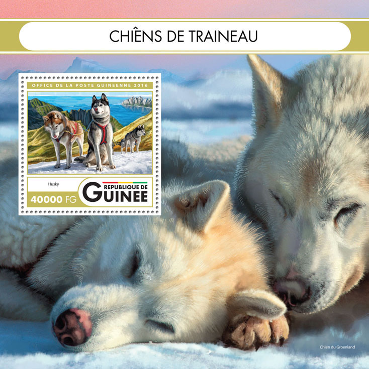 Sledge dogs - Issue of Guinée postage stamps