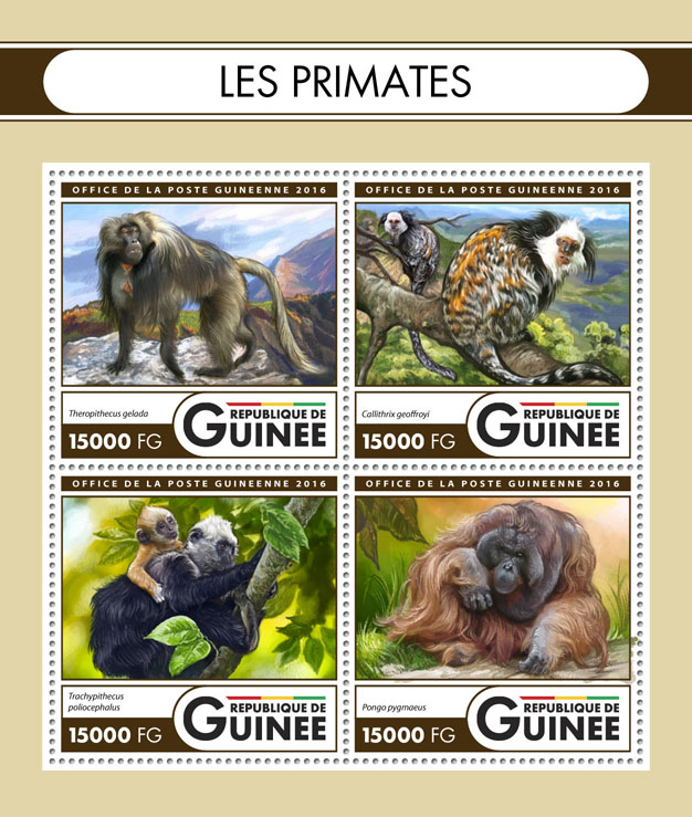 Primates - Issue of Guinée postage stamps