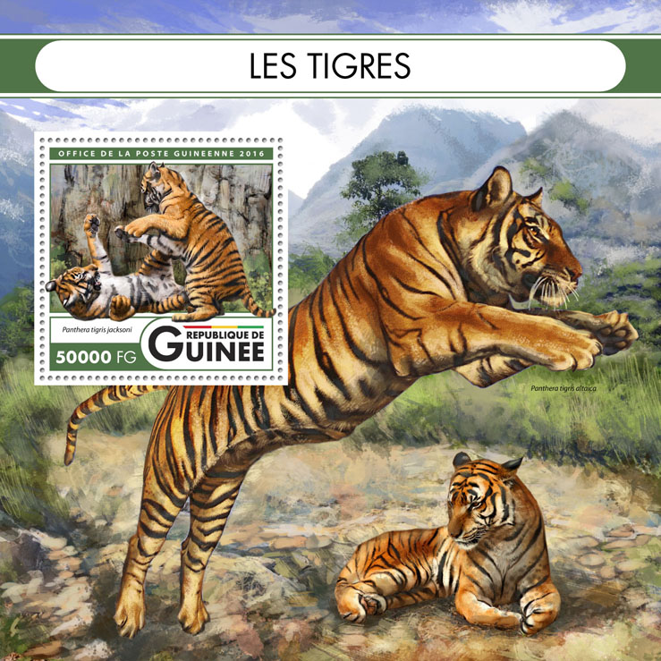 Tigers - Issue of Guinée postage stamps