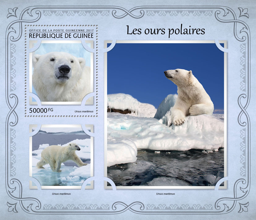 Polar bears - Issue of Guinée postage stamps